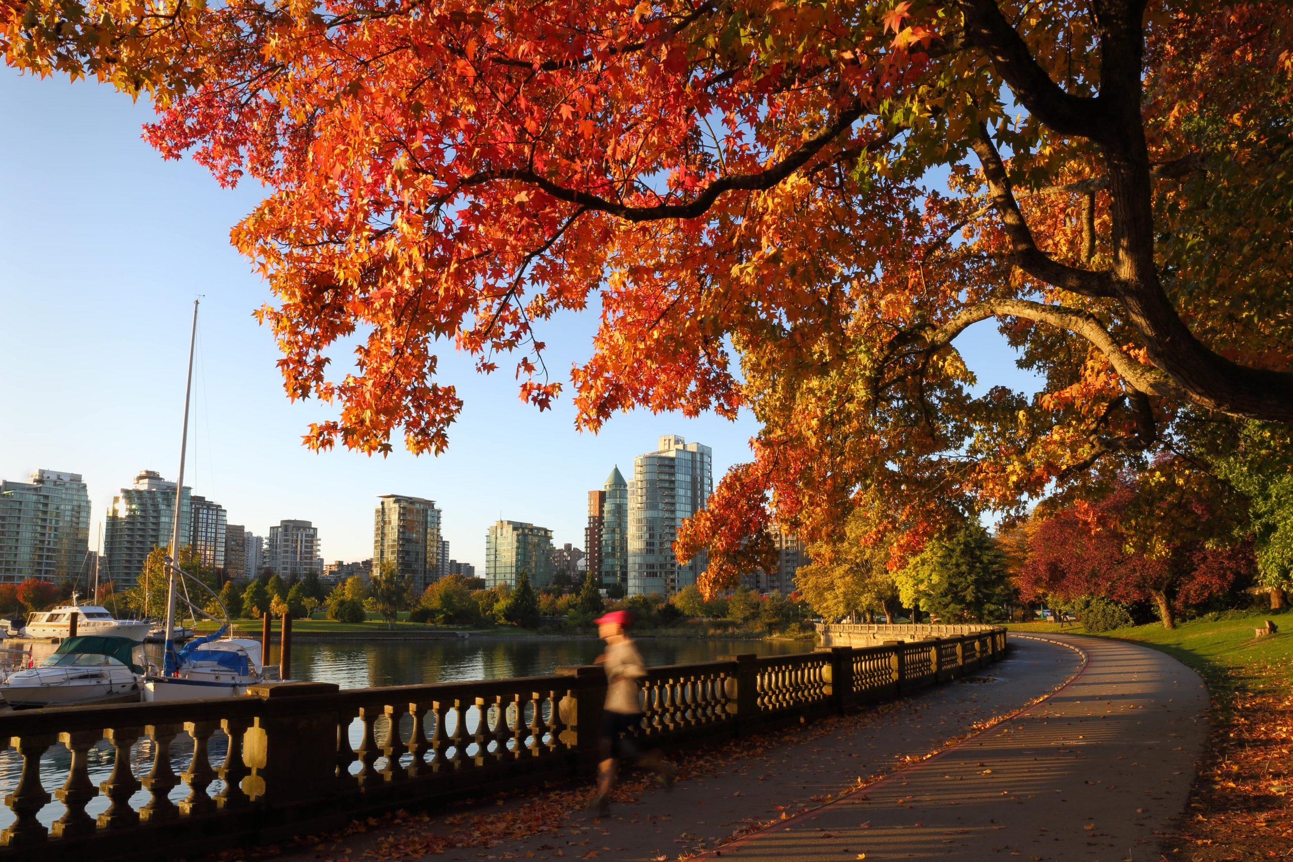 Fall Pest Prevention Tips