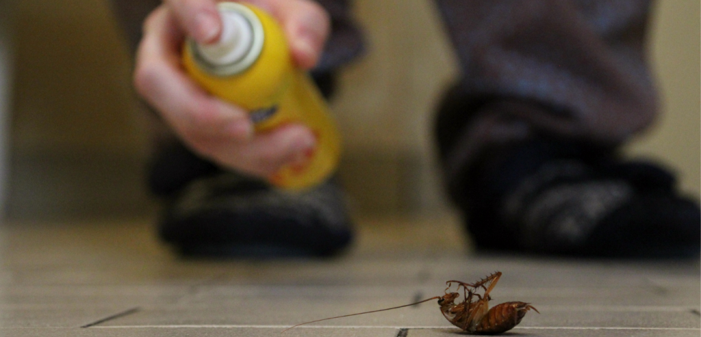 How Property Managers Can Get Rid Of Cockroaches For Good